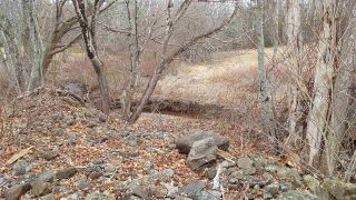 Photo 11: 11 Palmer Road in Harmony: 404-Kings County Vacant Land for sale (Annapolis Valley)  : MLS®# 202006110