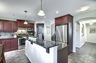 Photo 11: 410 DRAKE LANDING Point: Okotoks Detached for sale : MLS®# A1026782