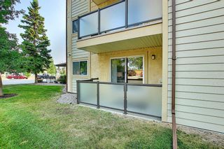 Photo 31: 3102 393 Patterson Hill SW in Calgary: Patterson Apartment for sale : MLS®# A1136424