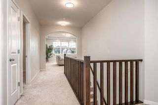 Photo 21: 57 CRANARCH Place SE in Calgary: Cranston Detached for sale : MLS®# A1112284