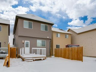 Photo 37: 107 Skyview Point Crescent NE in Calgary: Skyview Ranch Detached for sale : MLS®# A1048632
