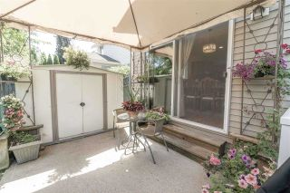 """Photo 18: 8424 208A Street in Langley: Willoughby Heights House for sale in """"YORKSON VILLAGE"""" : MLS®# R2357892"""