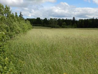 Photo 7: Lot 17 Second Division Road in Heathbell: 108-Rural Pictou County Vacant Land for sale (Northern Region)  : MLS®# 202116209