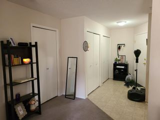 Photo 7: 109 2000 CITADEL MEADOW Point NW in Calgary: Citadel Apartment for sale : MLS®# A1136301