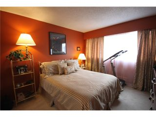 """Photo 5: 304 1048 KING ALBERT Avenue in Coquitlam: Central Coquitlam Condo for sale in """"BLUE MOUNTAIN MANOR"""" : MLS®# V914288"""
