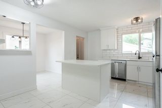 Photo 12: 17311 77 Avenue in Edmonton: Zone 20 House for sale : MLS®# E4255774