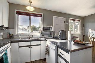Photo 6: 1711 65 Street NE in Calgary: Pineridge Detached for sale : MLS®# A1038776