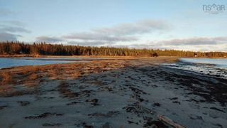 Photo 16: 5248 Port Morien Drive in Round Island: 207-C. B. County Vacant Land for sale (Cape Breton)  : MLS®# 202120892