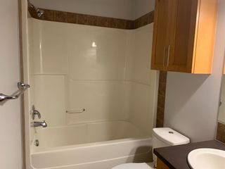 Photo 13: 219 2727 28 Avenue SE in Calgary: Dover Apartment for sale : MLS®# A1116933