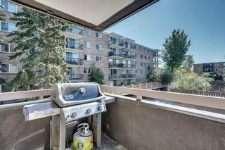 Photo 24: 201 511 56 Avenue SW in Calgary: Windsor Park Apartment for sale : MLS®# C4266284