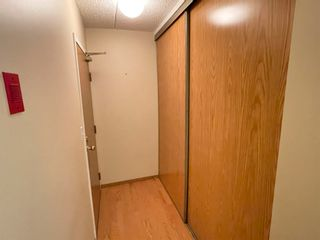 Photo 18: 303 9928 105 Street: Westlock Condo for sale : MLS®# E4256013