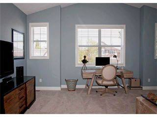 Photo 20: 67 CHAPMAN Way SE in Calgary: Chaparral House for sale : MLS®# C4065212