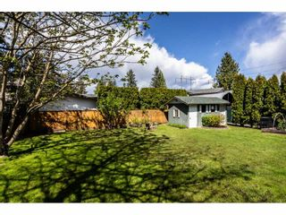 Photo 18: 4480 203 Street in Langley: Langley City House for sale : MLS®# R2384555