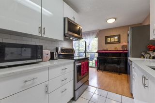 """Photo 13: 360 8151 RYAN Road in Richmond: South Arm Condo for sale in """"MAYFAIR COURT"""" : MLS®# R2580681"""