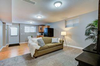 Photo 13: 24190 103 Avenue in Maple Ridge: Albion House for sale : MLS®# R2433360