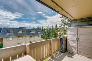 Photo 17: 2310 3115 51 Street SW in Calgary: Glenbrook Apartment for sale : MLS®# A1014586