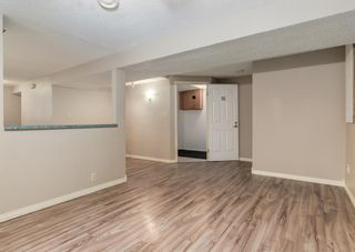Photo 17: 3135 Rae Crescent SE in Calgary: Albert Park/Radisson Heights Detached for sale : MLS®# A1139656