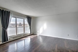 Photo 3: 411 333 Garry Crescent NE in Calgary: Greenview Apartment for sale : MLS®# A1088693