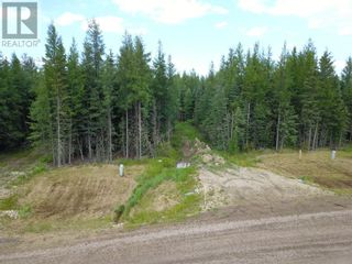 Photo 9: L10 B2 GRIZZLY RIDGE ESTATES in Rural Woodlands County: Vacant Land for sale : MLS®# A1046277