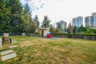 Photo 34: 602 7225 ACORN Avenue in Burnaby: Highgate Condo for sale (Burnaby South)  : MLS®# R2534220