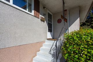 Photo 2: 3851 Merriman Dr in : SE Cedar Hill House for sale (Saanich East)  : MLS®# 853784