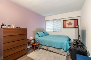Photo 11: 31 2441 KELLY Avenue in Port Coquitlam: Central Pt Coquitlam Condo for sale : MLS®# R2521585