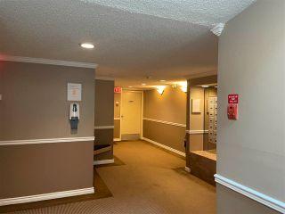 "Photo 17: 207 1750 AUGUSTA Avenue in Burnaby: Simon Fraser Univer. Condo for sale in ""AUGUSTA GROVE"" (Burnaby North)  : MLS®# R2580024"