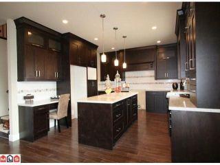 Photo 6: 17328 0A Avenue in Surrey: Pacific Douglas House for sale (South Surrey White Rock)  : MLS®# F1103293