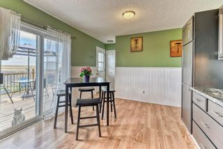 Photo 28: 424 Cole Crescent: Carseland Detached for sale : MLS®# A1106001