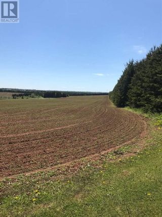 Photo 6: 339 Malpeque Road in Charlottetown: Vacant Land for sale : MLS®# 201821902