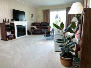 Photo 2: 2 7850 King George Boulevard in Surrey: East Newton Manufactured Home for sale : MLS®# F1418453