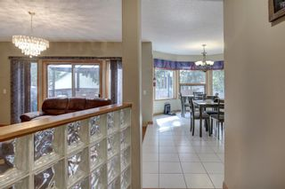 Photo 13: 338 Squirrel Street: Banff Detached for sale : MLS®# A1139166