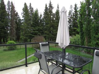Photo 45: 1305 2nd ST: Sundre Detached for sale : MLS®# A1120309