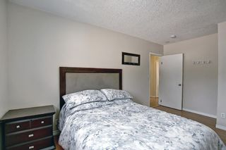 Photo 20: 4815 Vienna Drive NW in Calgary: Varsity Detached for sale : MLS®# A1128282