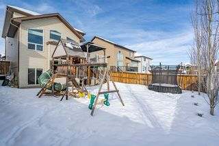 Photo 42: 209 Topaz Gate: Chestermere Residential for sale : MLS®# A1071394