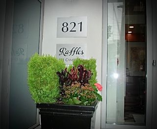"Photo 12: 1801 821 CAMBIE Street in Vancouver: Downtown VW Condo for sale in ""Raffles"" (Vancouver West)  : MLS®# R2404874"