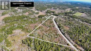 Photo 1: Acreage Grimm Road in Grimms Settlement: Vacant Land for sale : MLS®# 202108229