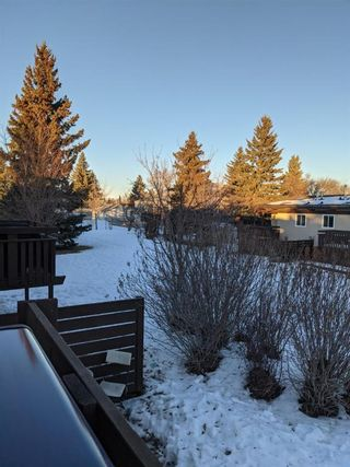 Photo 20: 105 Rundlewood Lane NE in Calgary: Rundle Semi Detached for sale : MLS®# A1060761