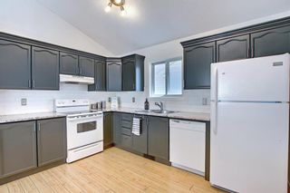 Photo 16: 66 Erin Green Way SE in Calgary: Erin Woods Detached for sale : MLS®# A1094602