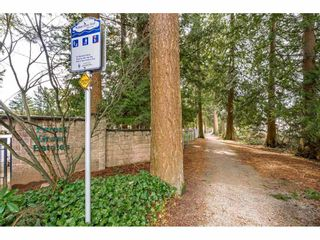 """Photo 38: 144 9080 198 Street in Langley: Walnut Grove Manufactured Home for sale in """"Forest Green Estates"""" : MLS®# R2547328"""