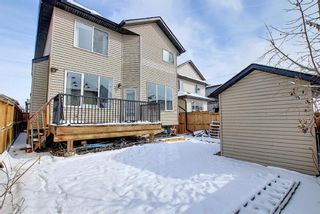 Photo 46: 458 Saddlelake Drive NE in Calgary: Saddle Ridge Detached for sale : MLS®# A1086829
