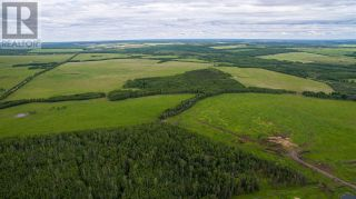 Photo 5: 15166 BUICK CREEK ROAD in Fort St. John (Zone 60): Agriculture for sale : MLS®# C8030416