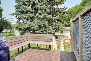 Photo 32: 420 Thornhill Place NW in Calgary: Thorncliffe Detached for sale : MLS®# A1146639