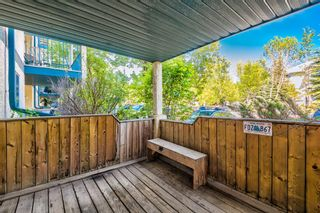 Photo 10: 114 11 Dover Point SE in Calgary: Dover Apartment for sale : MLS®# A1125915