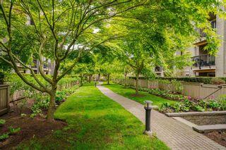 """Photo 31: 316 21009 56 Avenue in Langley: Salmon River Condo for sale in """"""""CORNERSTONE"""""""" : MLS®# R2604621"""