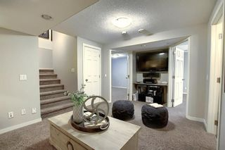 Photo 49: 227 Prestwick Manor SE in Calgary: McKenzie Towne Detached for sale : MLS®# A1059017