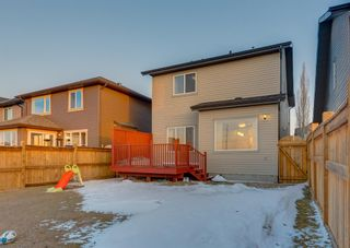 Photo 44: 150 AUTUMN Circle SE in Calgary: Auburn Bay Detached for sale : MLS®# A1089231
