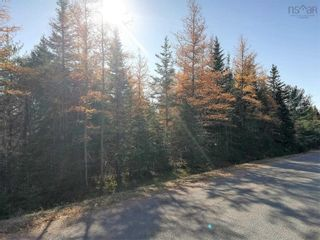 Photo 4: Lot 1 Hirem Lynds Road in Central North River: 104-Truro/Bible Hill/Brookfield Vacant Land for sale (Northern Region)  : MLS®# 202122060