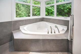 Photo 25: 24712 110 Avenue in Maple Ridge: Albion House for sale : MLS®# R2587423