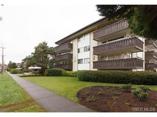 Photo 17: 202 964 Heywood Ave in VICTORIA: Vi Fairfield West Condo for sale (Victoria)  : MLS®# 719805